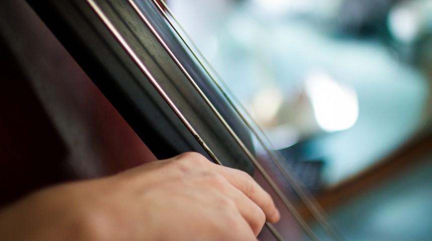 Detalle de contrabajo , conciertos gratis en palacio de hielo
